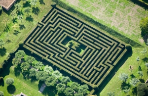 Aerial view of hedge maze